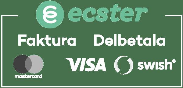 Ecster Pay betalningsalternativ